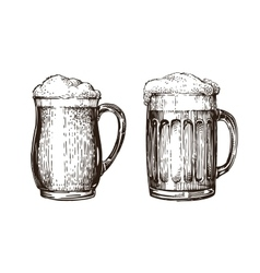 Hand drawn beer mug Elements for design menu vector image vector image