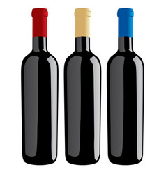 wine bottles classic shape vector image