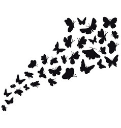 butterfly flow silhouettes flying butterflies vector image