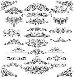 collection of vintage calligraphic flourishes vector image