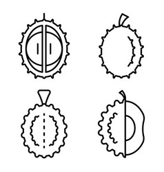 Durian icons set outline style vector