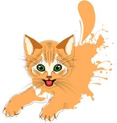 Ginger cat grunge vector image