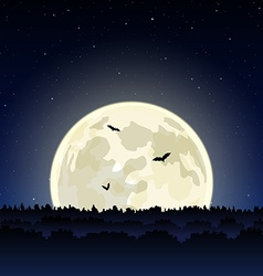night landscape vector image