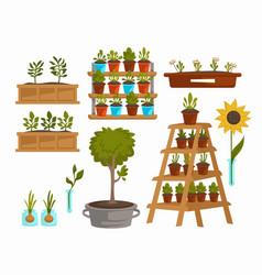 Planting vegetables and trees plants and flowers vector