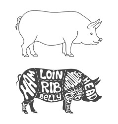 Pork cuts diagram vector image
