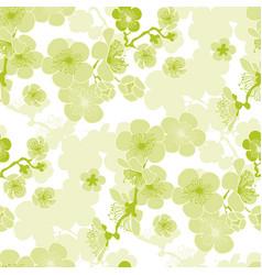 sakura spring blooming seamless pattern vector image