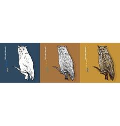 siberian eagle owl or bubo bubo sibiricus vector image