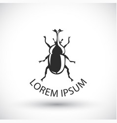 stag beetle vector image