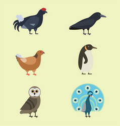 bird species collection different vector image