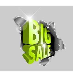 Big sale discount advertisement vector image vector image