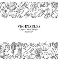 poster template borders with hand drawn vegetables vector image