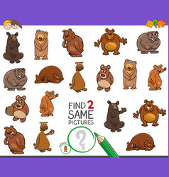 Find two same bears characters game for kids vector
