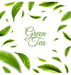 Green tea background vector