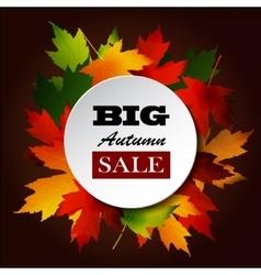 Maple leaf frame for seasonal sales vector image