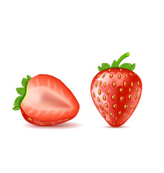 Red ripe strawberries summer berry fruit vector