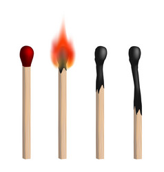 set of isolated realistic matches vector image