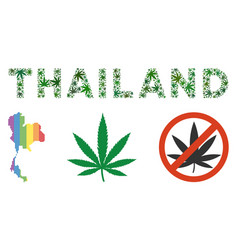 Thailand label composition of hemp leaves vector