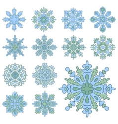 Various isolated winter snowflakes vector image