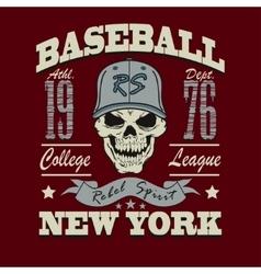 baseball skull t-shirt graphic design vector image