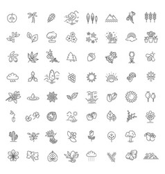 Big natural icon set vector