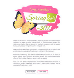 big sale spring discount offer label butterfly vector image
