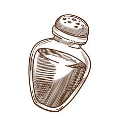 Cooking ingredient salt shaker spice or food vector