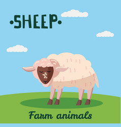 cute sheep farm animal character farm animals vector image