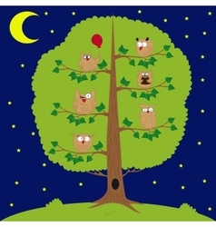 owl sitting at night on the tree funny owls vector image