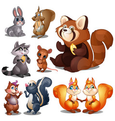 rabbit raccoon squirrel beaver hamster mouse vector image
