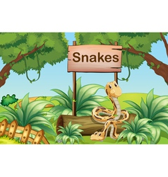 Snakes in the hills beside a wooden signboard vector image