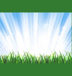 Spring or summer sunrise grass landscape vector