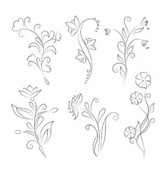Decorative floral elements for design vector image