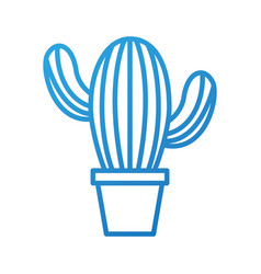 potted cactus natural plant decoration interior vector image