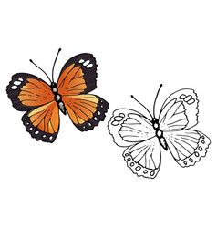 Butterfly coloring set - vector