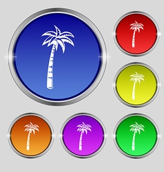 Palm icon sign Round symbol on bright colourful vector image