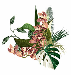 tropical palm leaves beige orchid flowers vector image
