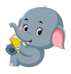 cute elephant reading a book vector image