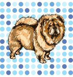 Pets dog vector image vector image