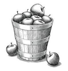 Apple in basket hand drawing vintage style black vector