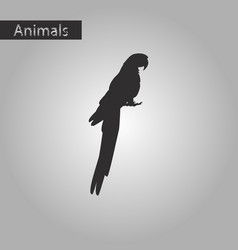 black and white style icon of parrot vector image