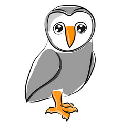 cute owl on white background vector image