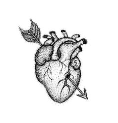 Dotwork heart with arrow vector