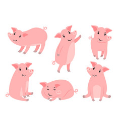 Little piggy character cartoon funny pink pig boy vector