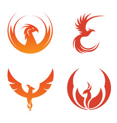 Red bird set image vector