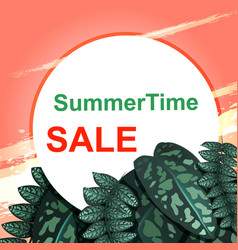 Summer sale concept pink sunset and green leaves vector