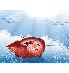 Underwater Backdrop with a Crab vector image