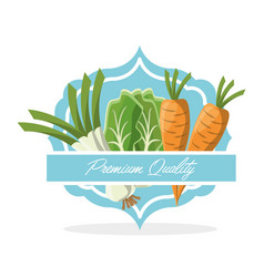 Vegetables premium quality food vector