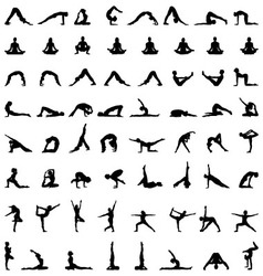 yoga and fitness vector image