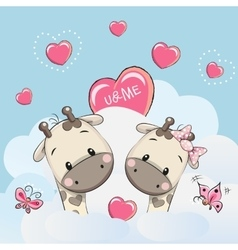 Cute Lovers Giraffes vector image