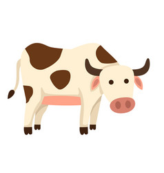 isolated cow on white background vector image